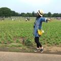 【妊娠8ヶ月】5月GWのバーベキューの服装は日焼け対策重視